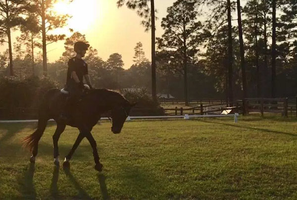 Southern Pines Riding School